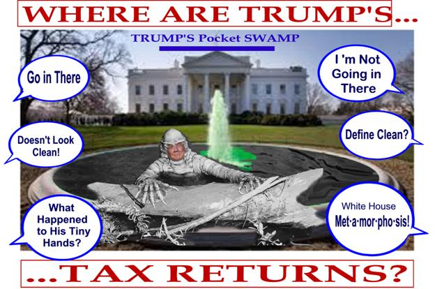 Swamp Tax Return1
